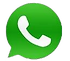 whatsapp-icon-green-white_transp.png