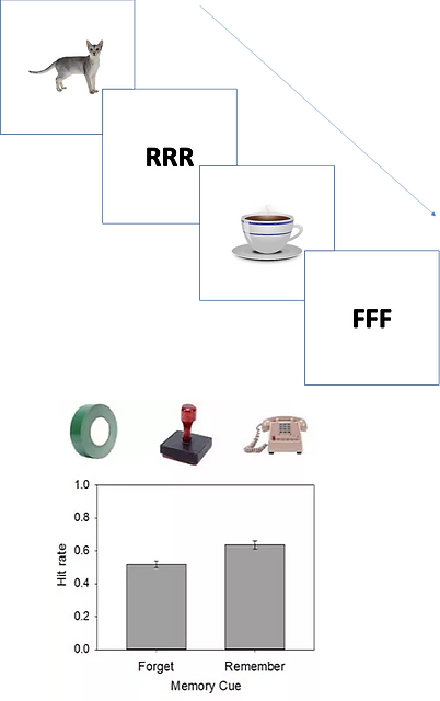 Sample trial of item-method directed forgetting, with observers told to remember or forget individal items. Below is a graph of the directed forgetting effect, with items associated with forget instructions remembered less often than items associated with remember instructions.