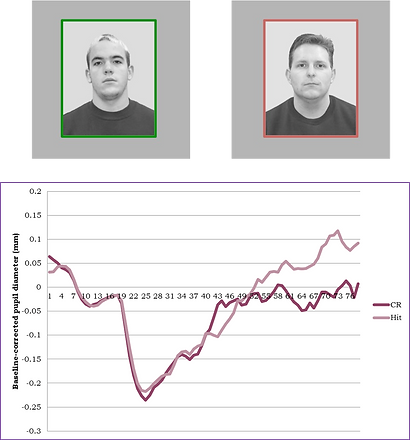 Sample trial of faces surrouned by borders indicating high reward or low reward. Bottom panel shows sample pupil dilation data, with a larger pupil response for hits than correct rejections.
