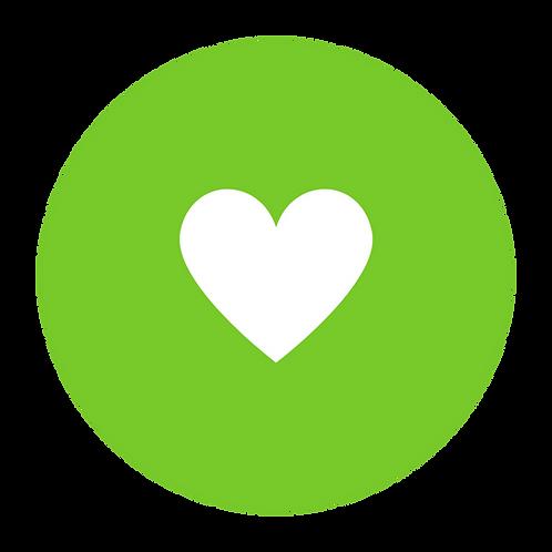 HEART SPONSOR ($250-$500)