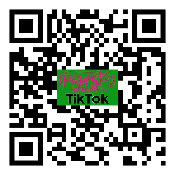 PAWS QR TikTok.png