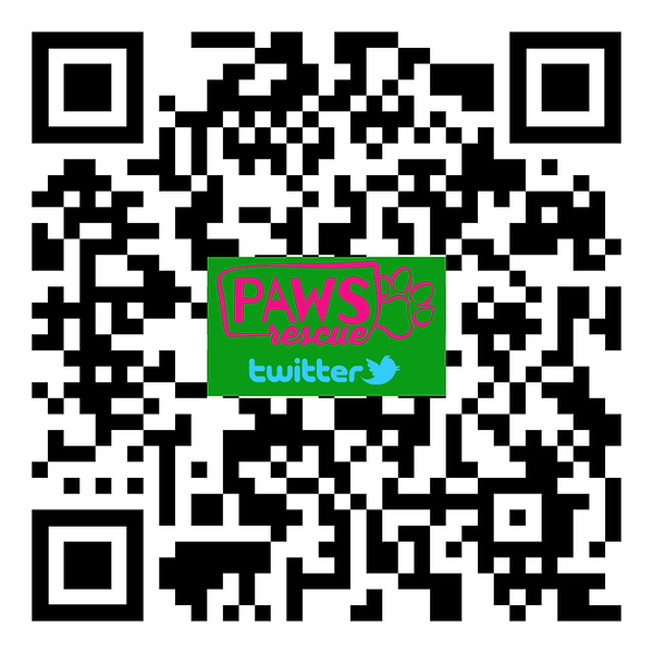 PAWS QR Twitter.png