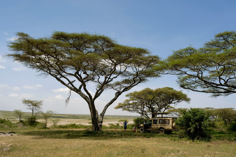 Our lunchspot in Ndutu between the wild animals. #exciting