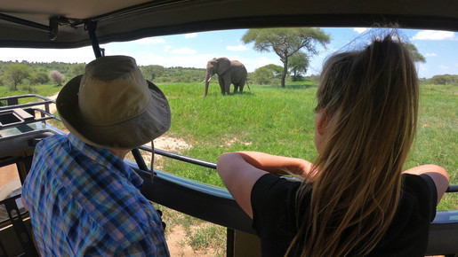 Spotting a elephant in Tarangire National Park.