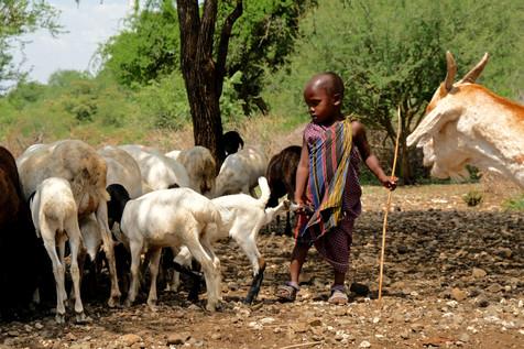 Hold on, little masai man!