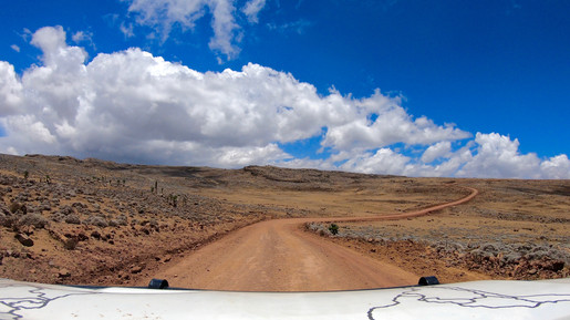 The road in Bale National Park.