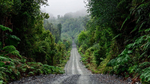 One part of the ruta 7, driving trough the rainforest.