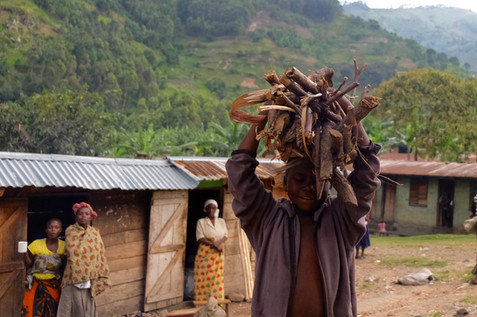 Children help in the household from an early age. This boy has collected wood and carries it back home on his head.