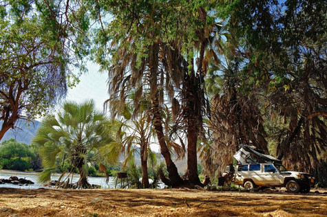 """Give me a home among the palmtrees"""