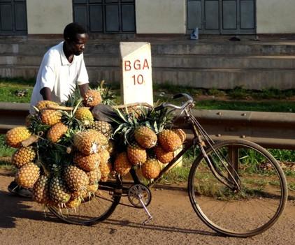 Pineaple man in Arusha