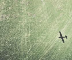 Cessna 180 Shadow in Field