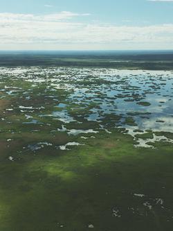 Alberta Wetlands