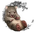 Wombat_edited_edited.png