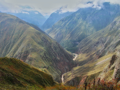 Colca Canyon auf eigene Faust *Peru*
