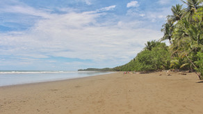 Entlang der Pazifikküste Costa Ricas