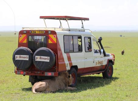 Meine Route durch Uganda und Kenia