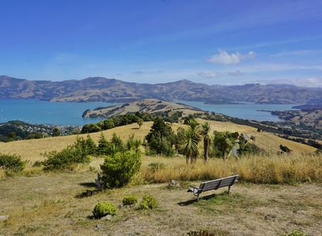 Meeresbuchten, Wanderwege und französisches Flair in Akaroa *Neuseeland*