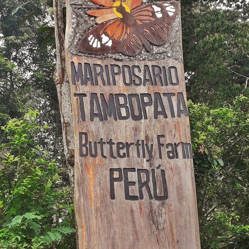 Mariposario Tambopata