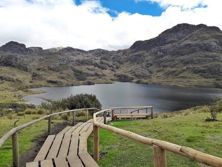 Über Stock und Stein im Nationalpark Cajas *Ecuador*