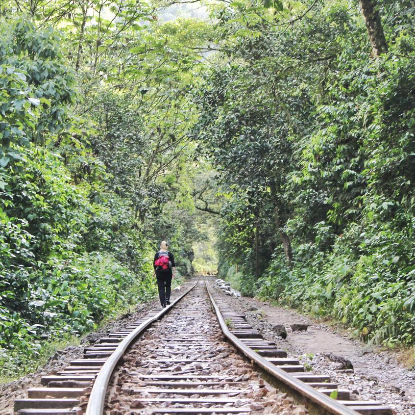Fußweg nach Aguas Calientes