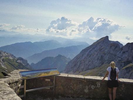 Ein Lebenszeichen aus der Schweiz