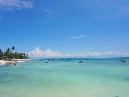Sansibar: Orts-Check und Insel-Highlights