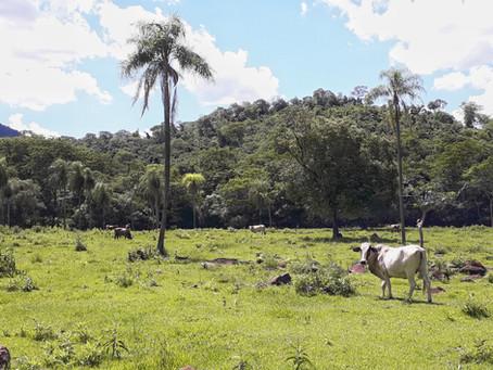 Paraguay - eine Reise wert?