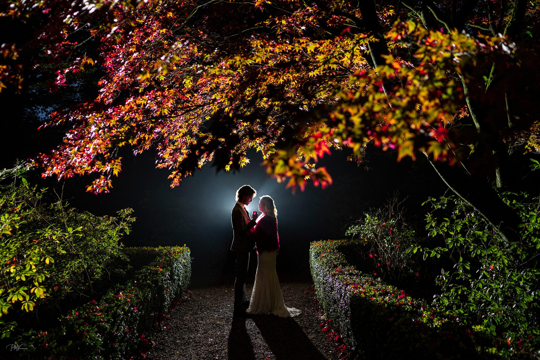 ENGAGEMENTS, ELOPEMENTS, WEDDINGS