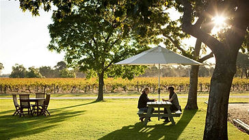 Rutherglen Wine Region