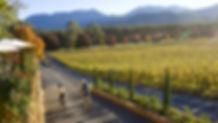 Alpine Valley WIne Region