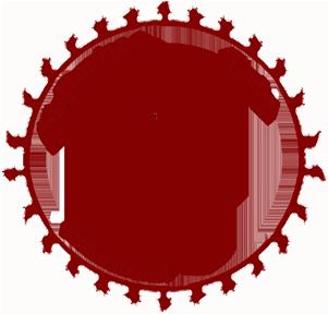 logo skydancing international.png