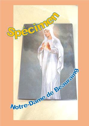 Notre-Dame de Beauraing