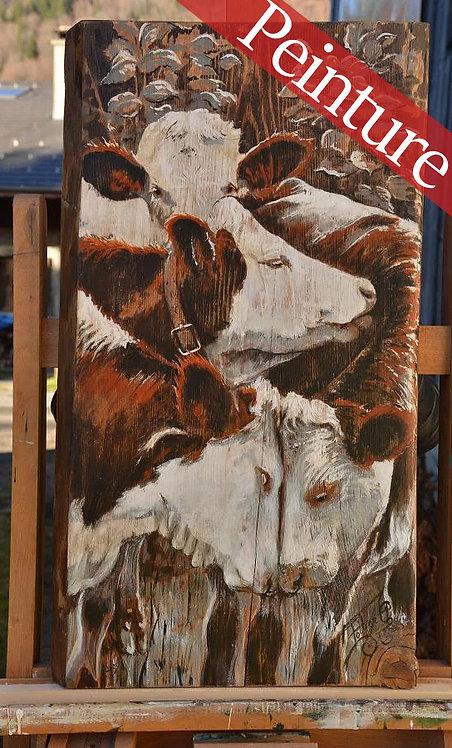 Cœur d'adolescent : portrait vache race Abondance : 65 x 37 cm