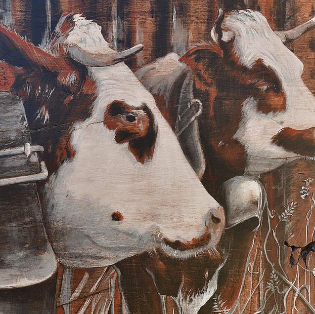 Vie de vache de vie