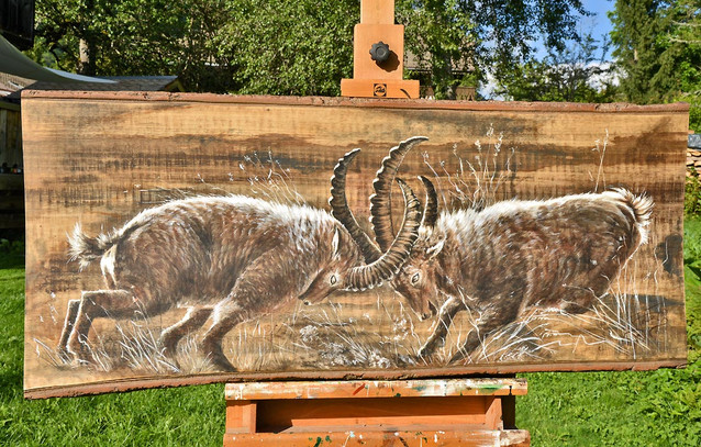 Peinture animalière collection bouquetin.