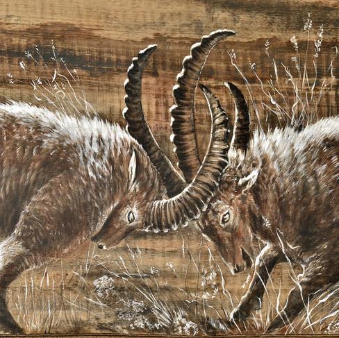 Peinture animalière