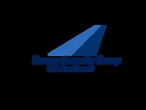 ConSecGroup_logo_png.png