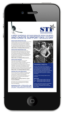 STI Printed Brochure 2015