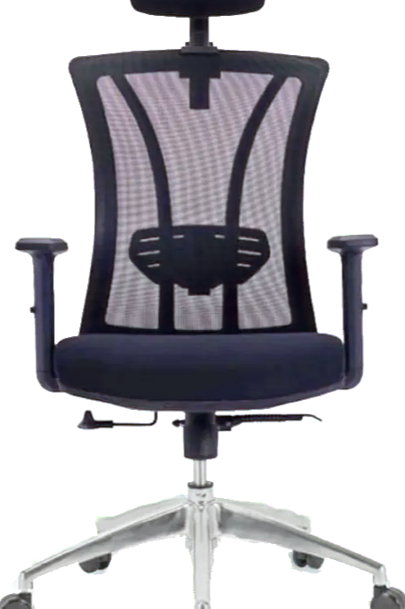 ZIOS Mesh Chair