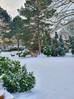 Schnee! Schnee! Es ist alles weiß!
