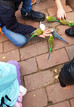 Herbstferienfreizeit in der Tagesgruppe