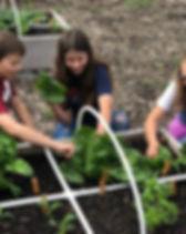 garden tribe.jpg