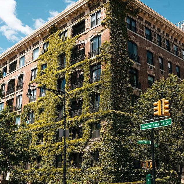 Morningside Drive and West 116th Street, Manhattan, New York, June 2020
