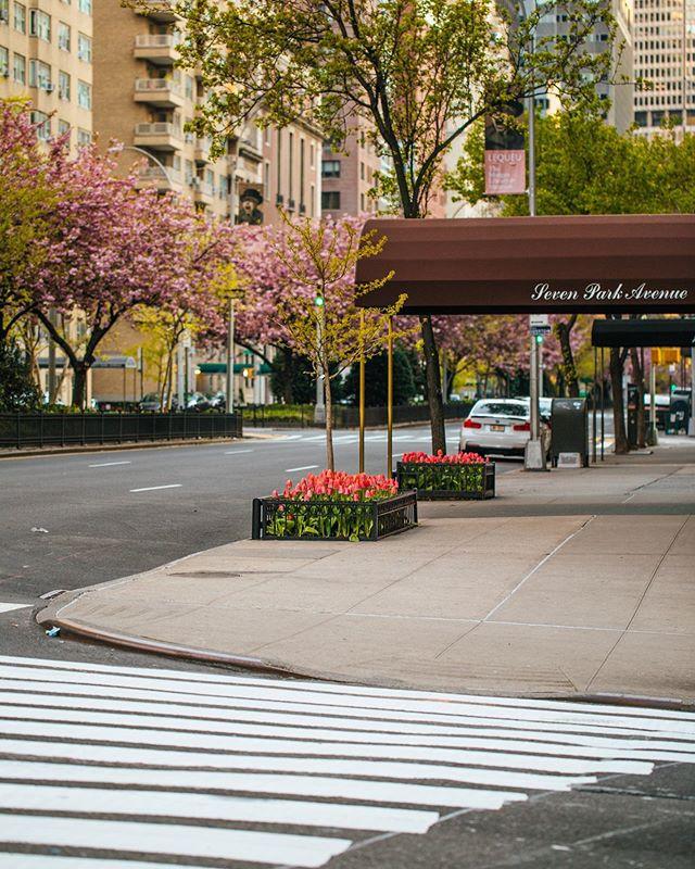 7 Park Avenue, Murray Hill, New York