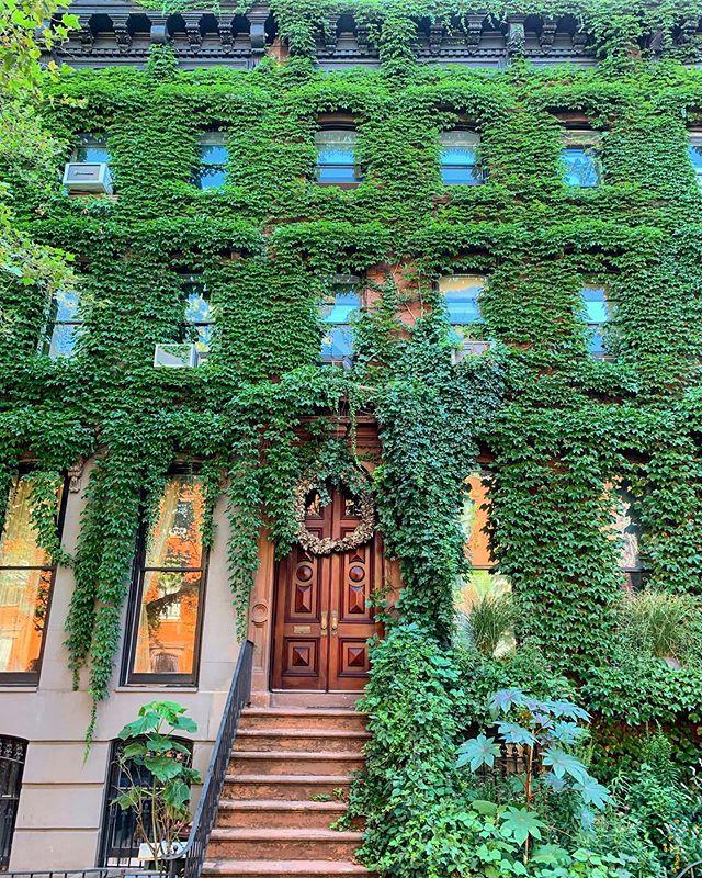 243 Carlton Ave, Fort Green, Brooklyn, New York, June 2019