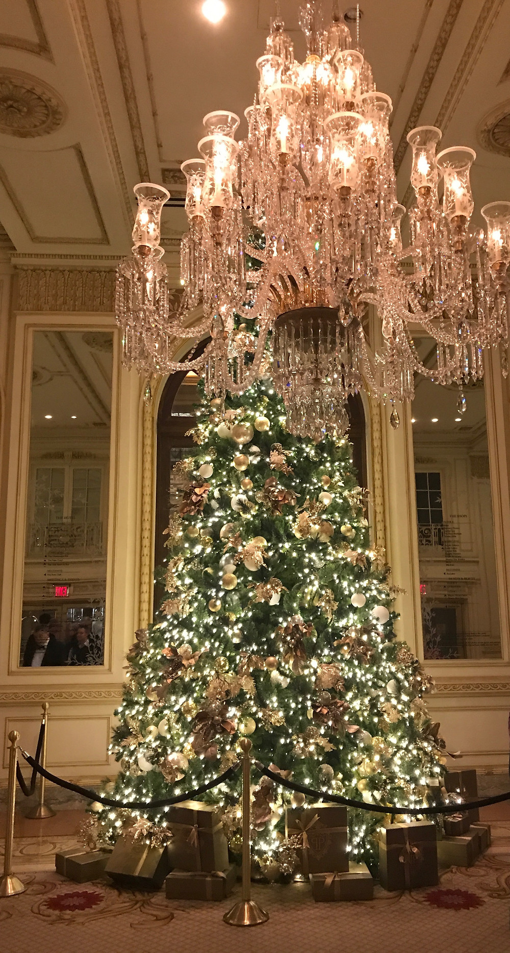 Christmas tree as soon as you enter the Plaza Hotel