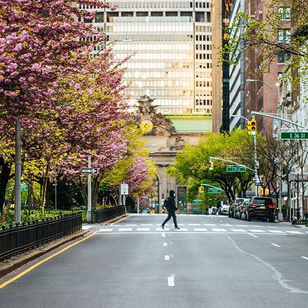 34th Street and Park Avenue, Murray Hill, Manhattan, April 2020