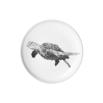 Maxwell & Williams Marini Ferlazzo Plate - 20cm Green Sea Turtle