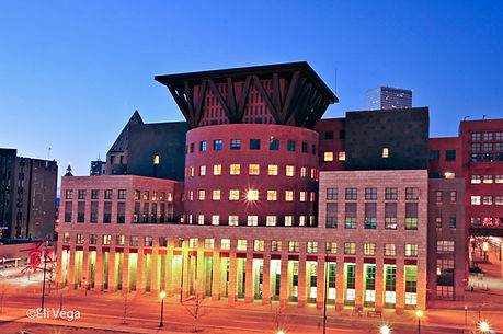 Denver Library