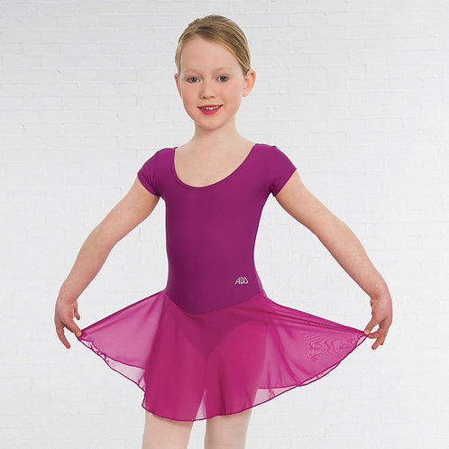 ABD Ballet skirted leotard